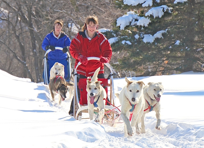 Getting into the mushing groove