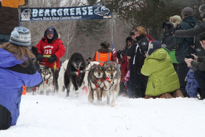 Even in mushing... some dogs resemble their owners ;)